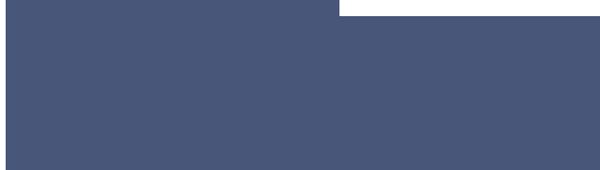 Stelzhammer GmbH Retina Logo